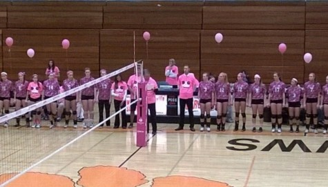 Wheaton Warrenville South wins second annual Dig Pink