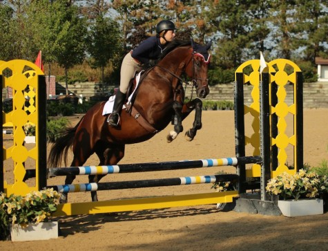 Junior Katie Ladin nurtures a bond with her horse, Derby