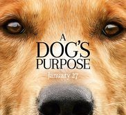Film Review: 'A Dog's Purpose'