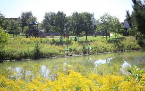 Commentary: Illinois Waterway Cleanup promotes unity and responsbility
